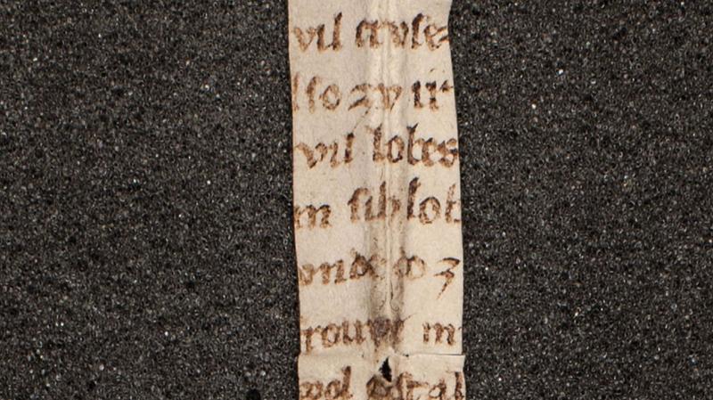 Several lines of Der Rosendorn on the Melk fragment.
