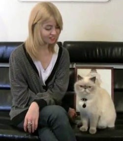 Illustration for article titled Winston Interviews Top Model Allison