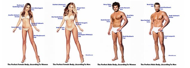 here are the perfect male and female bodies according to