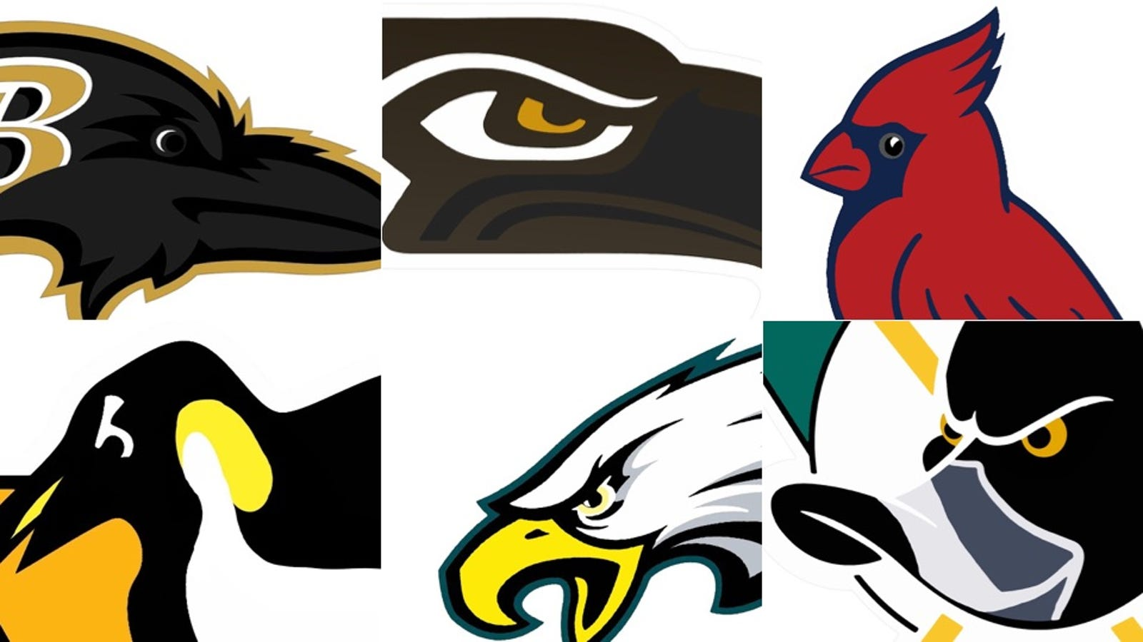 Let's Fix All The Bird Logos In Pro Sports