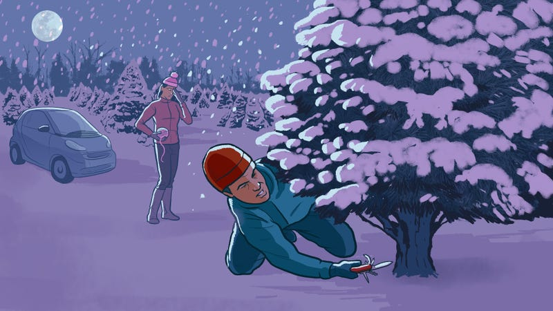 Illustration for article titled A Complete Guide to Finding and Chopping Down Your Own Tree