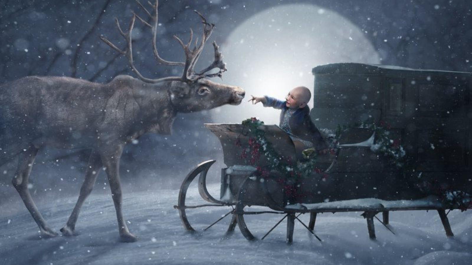 Fotógrafos voluntarios visitan a cientos de niños enfermos y convierten sus retratos en escenas mágicas de Navidad