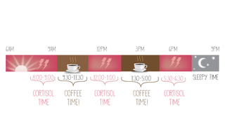 Illustration for article titled The Scientifically Best Time to Drink Coffee, in One Simple Graphic
