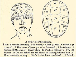 Illustration for article titled Phrenological Chart May Help Us Better Understand Sarah Palin's Brain