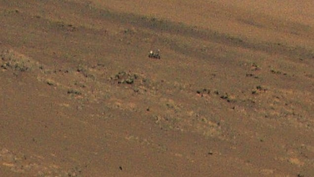 Just Two Robots Hanging Out on Mars