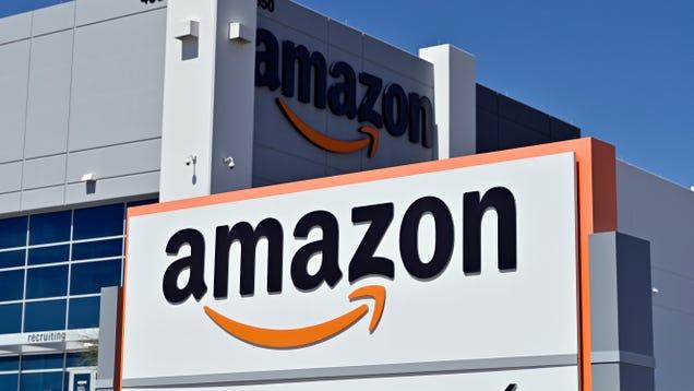 Senator Asks DOJ to Open a Criminal Investigation Into Amazon s Algorithmic Monopoly
