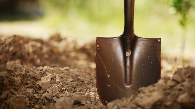 the 8 types of shovels everyone should know