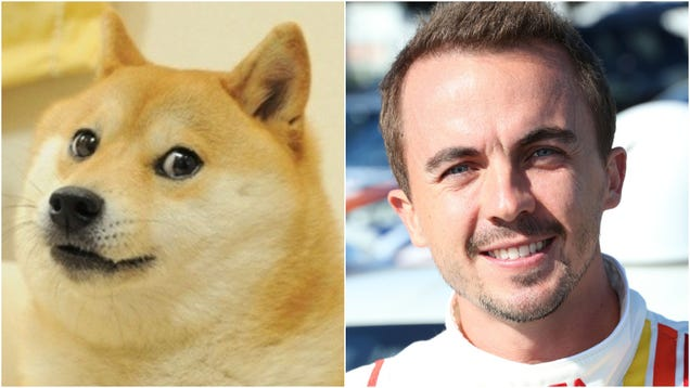 The GameStop stonk bubble has swallowed DogeCoin, Frankie Muniz
