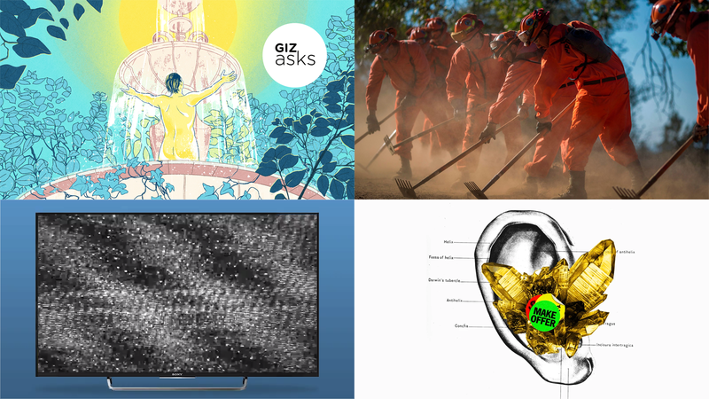Healing Crystals, Hurricane Dorian, and a $14,000 Gamer Chair: Best Gizmodo Stories of the Week