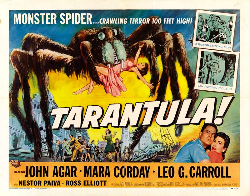 Illustration for article titled Svengoolie:  Tarantula (1955)