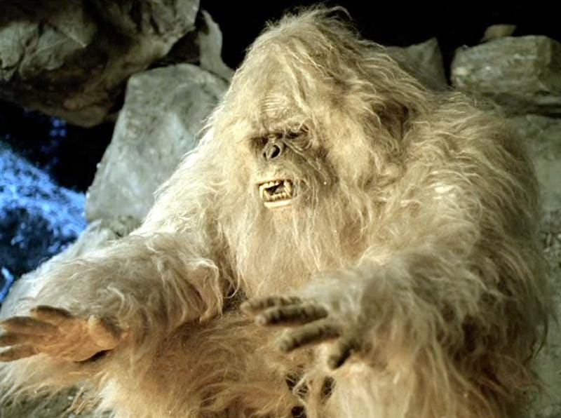 no the yeti legend was not inspired by a prehistoric bear