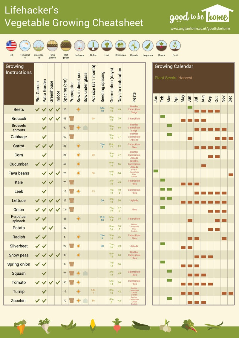 Create a personalized vegetable gardening cheat sheet with for Gardening tools list pdf