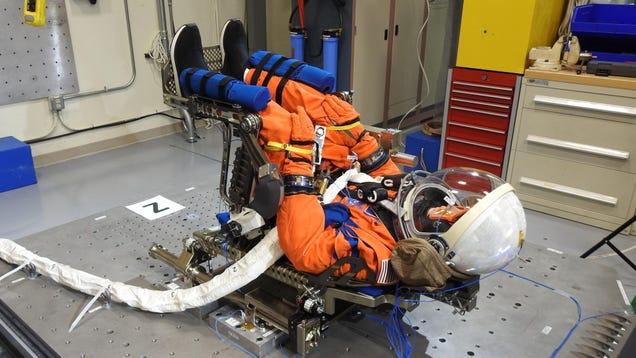 NASA's 'Moonikin' Will Boldly Go Where No Test Dummy Has Gone Before