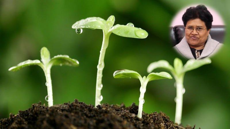 Illustration for article titled How do I start a Career in Ecological Conservation?