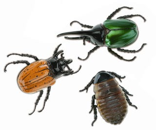 Illustration for article titled Discovery RC Arthropods Are Just Pretentiously Named Plastic Bugs