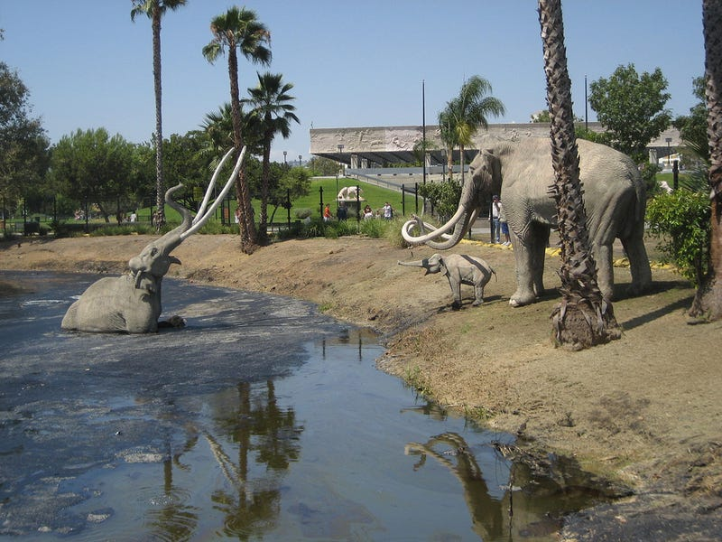 Illustration for article titled To This Day, I Am Terrified of The La Brea Tar Pits
