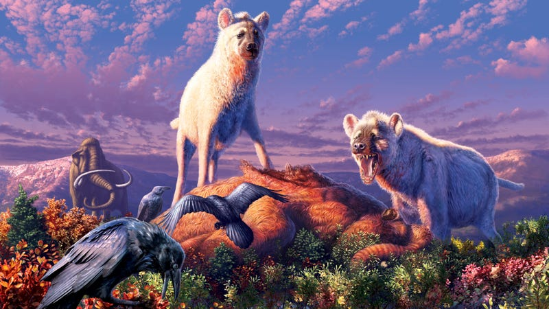 Artist's impression of the ancient Arctic hyenas.