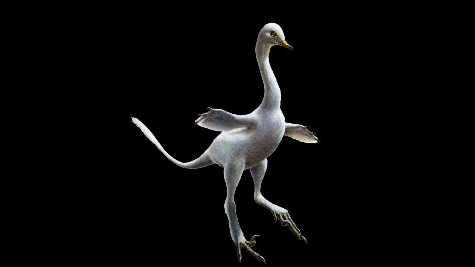 Freaky New Dinosaur Was Part Duck, Part Raptor