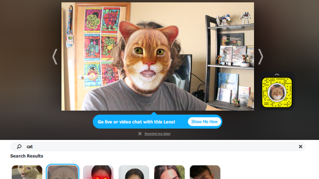 How to Turn Yourself Into a Cat (In a Video Call)