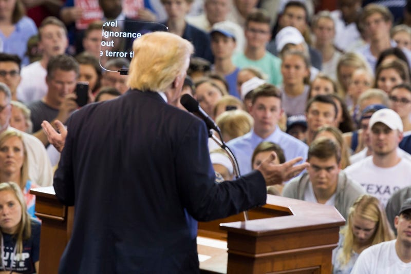 Neo-fascist candidate for president Donald Trump speaks at a rally in High Point, North Carolina on Tuesday (AP Photo/ Evan Vucci)