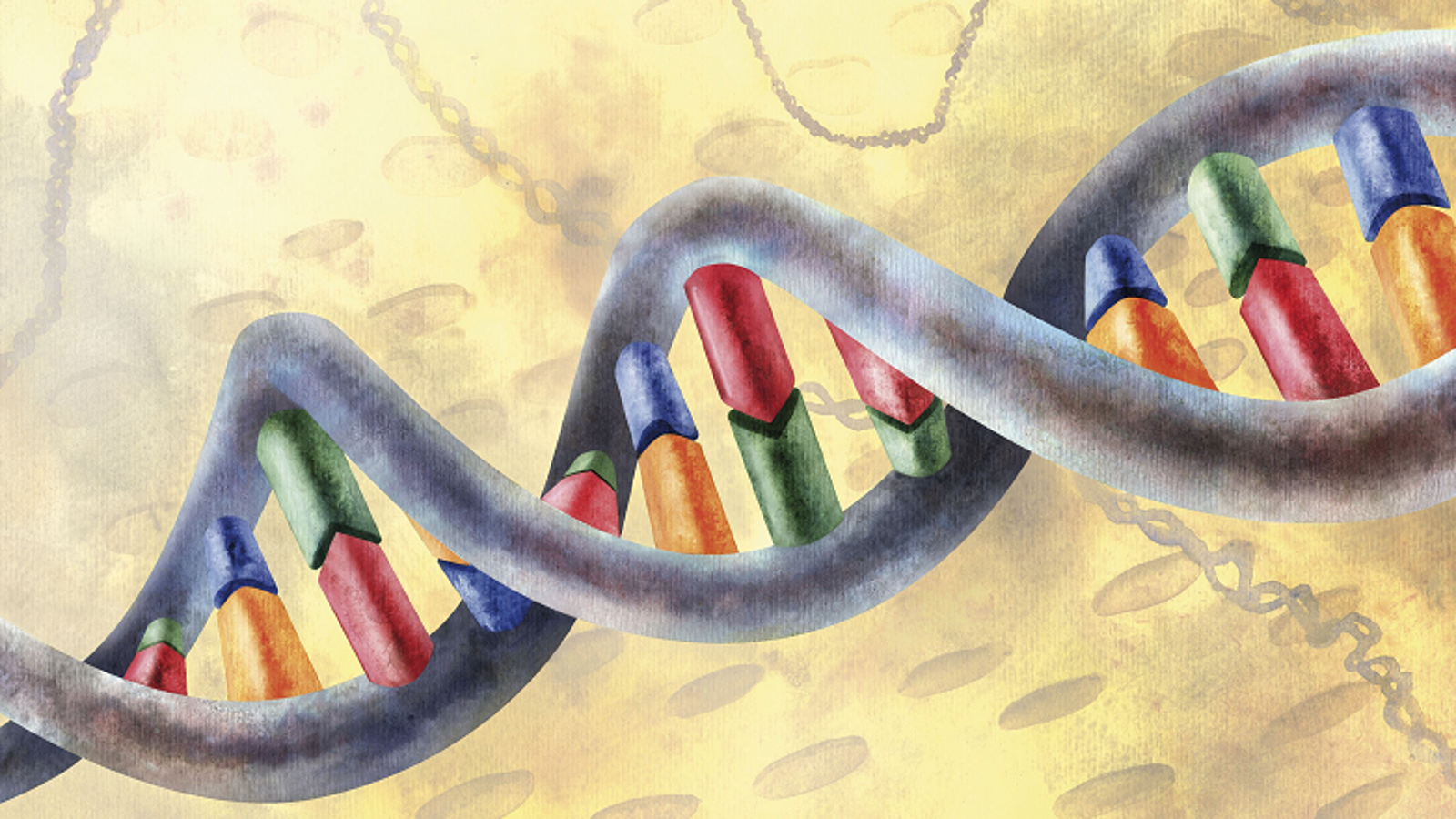 Video Explainer: The Math Inside the Shape of DNA