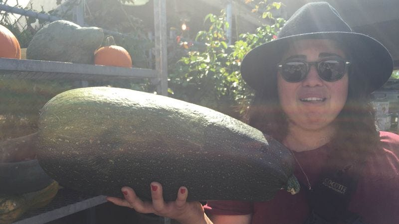 For example, this giant zucchini. (Also pictured: Our Spade & Palacio tour guide.)