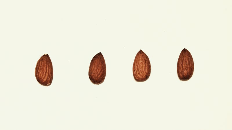 """Illustration for article titled FDA commissioner:""""An almond doesn't lactate"""""""