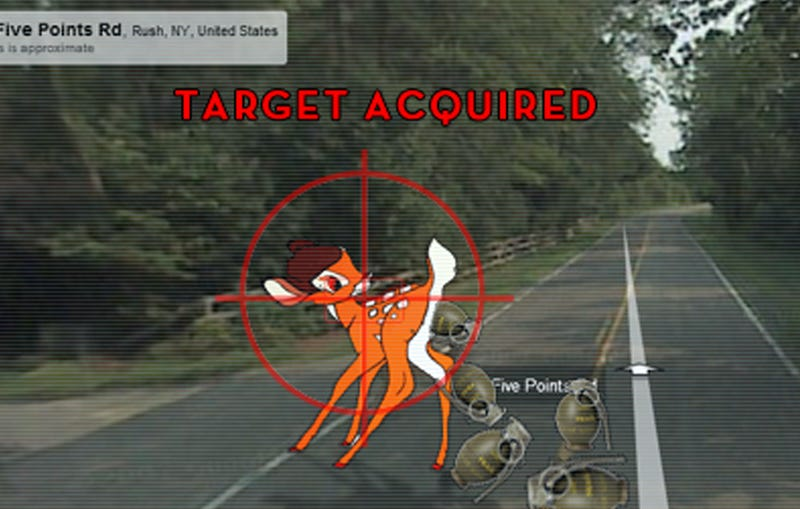 Illustration for article titled Google Deletes Photos Of Google Maps Car Hitting Non-Google Deer