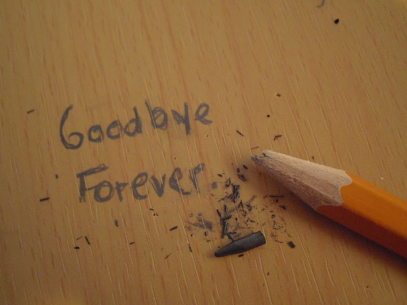 Illustration for article titled Goodbye. This Is The End.