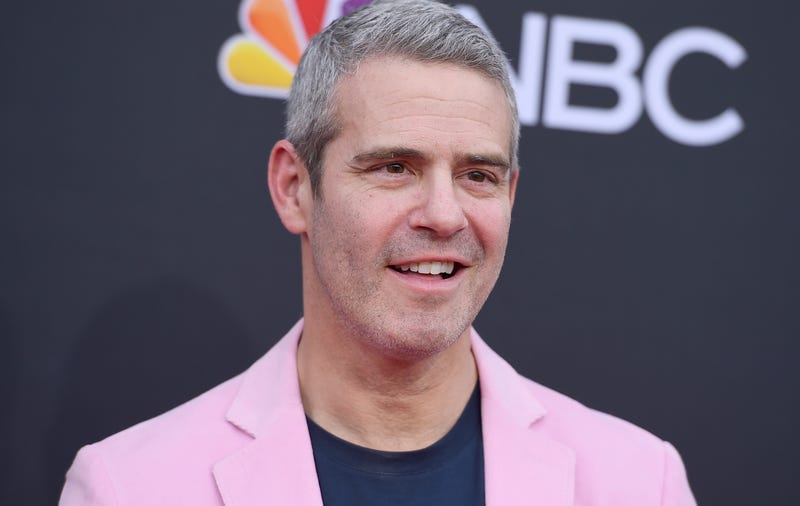 Illustration for article titled Andy Cohen's Flight to France Disrupted by Clogged Toilet