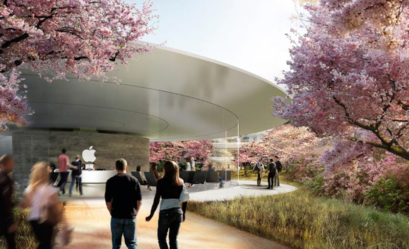 Illustration for article titled Take a Tour Through the Glassy Halls of Apple's Future HQ