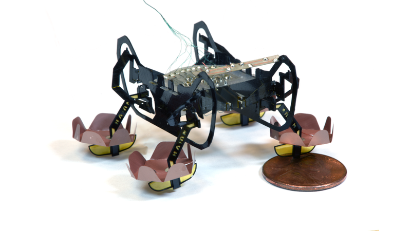 Havard's Ambulatory Microrobot (HAMR)