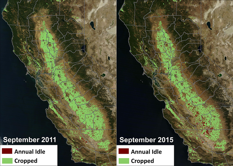 Illustration for article titled This Is What Five Years of Drought Has Done to California's Farmland