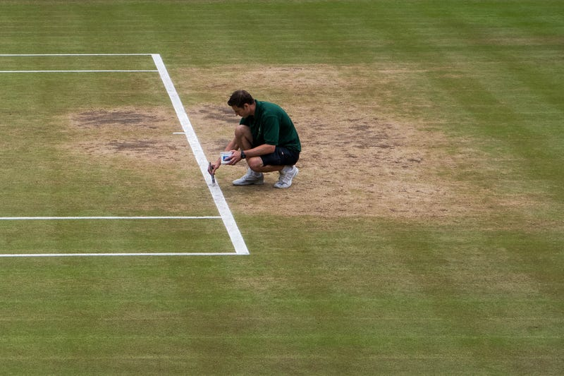 Three Wimbledon matches have reportedly raised suspicions about match-fixing