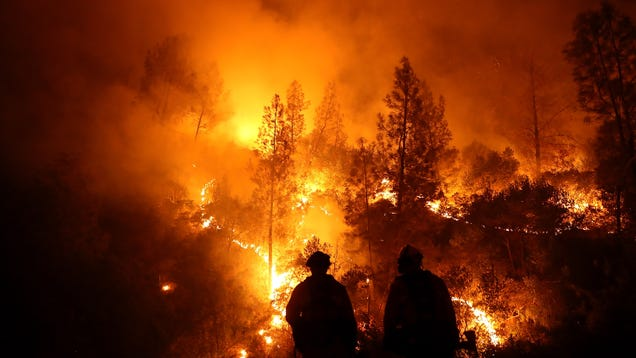 The Largest Wildfire in California s History Is Finally Out