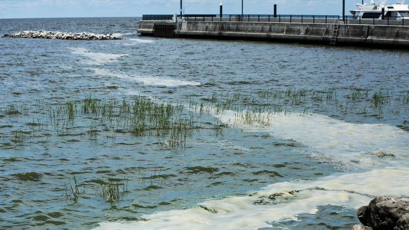 Algae wash up on the shores of Lake Okeechobee