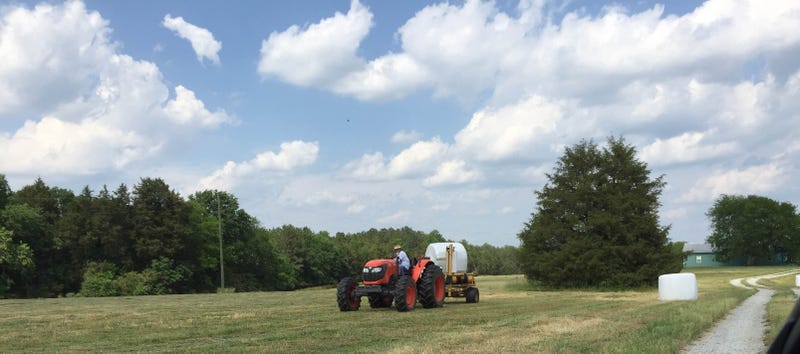 Harvesting hay in Newberry County, South Carolina. The plastic covers make the bales ferment slightly, raising their nutritional value. This hay will feed local beef cattle.