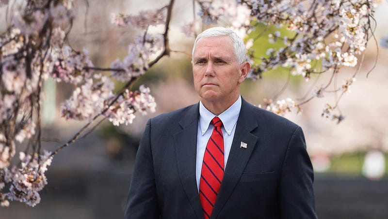 Illustration for article titled Mike Pence Horrified By D.C. Cherry Trees Flagrantly Displaying Reproductive Organs