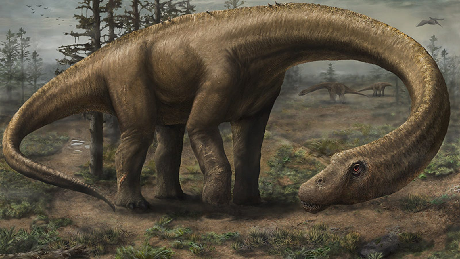 Dreadnoughtus, A Newly Discovered Supermassive Dinosaur, By The Numbers