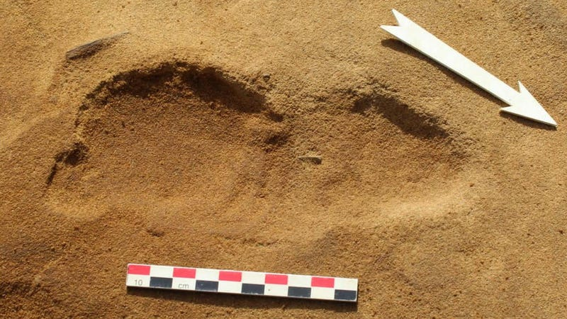 Trove of Neanderthal Footprints Provide an Unprecedented Glimpse Into Prehistoric Life