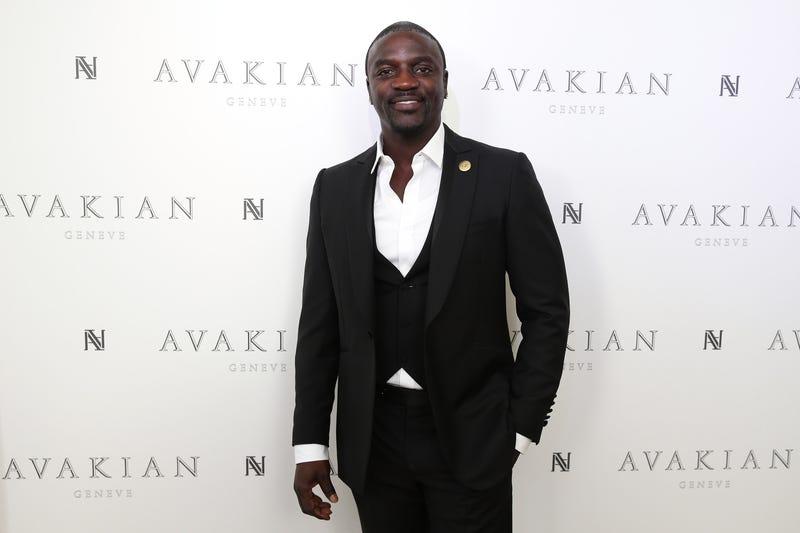 Akon, looking like a bag of Akoins