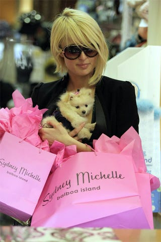 Illustration for article titled Paris Hilton + Pink + Pup = A Picture Made In Paparazzi Heaven