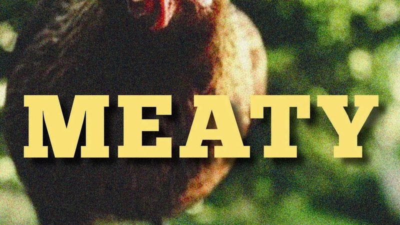 The book cover for Samantha Irby's Meaty