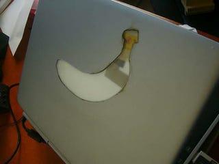 Illustration for article titled Banana Laptop Mod; Apple Got The Wrong Fruit