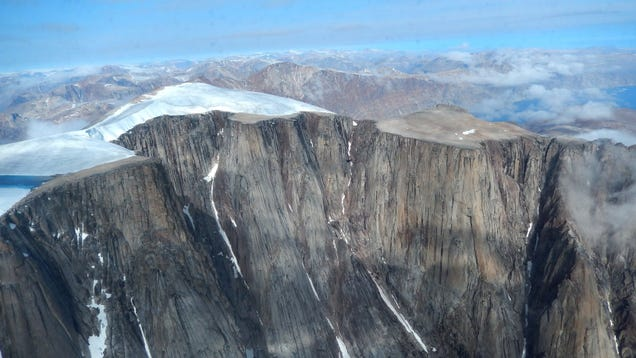 Ancient Plants RevealArctic Summers Haven t Been This Hot in 115,000 Years