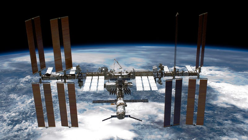 NASA Scientists Find Possibly Infectious Superbugs on Board the ISS
