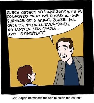 Illustration for article titled Learning From Carl Sagan: Even Cat Sh*t Is Made of Starstuff