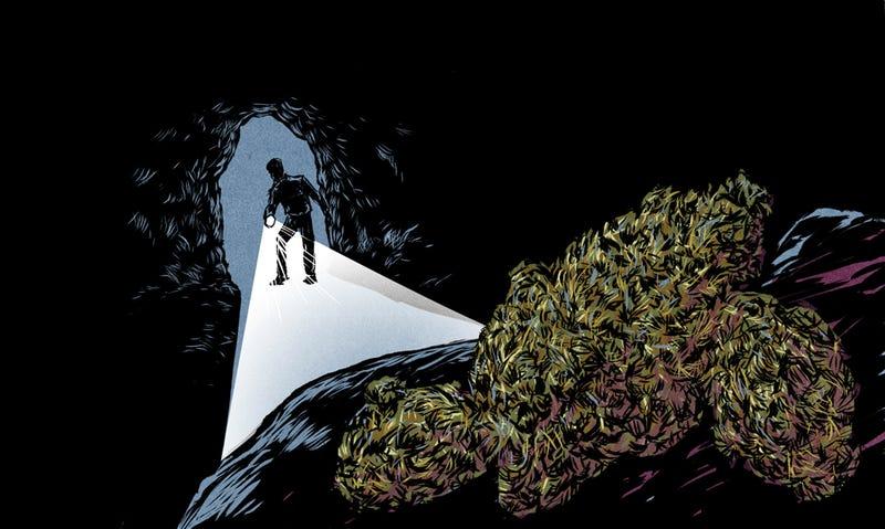 Find a weed hookup