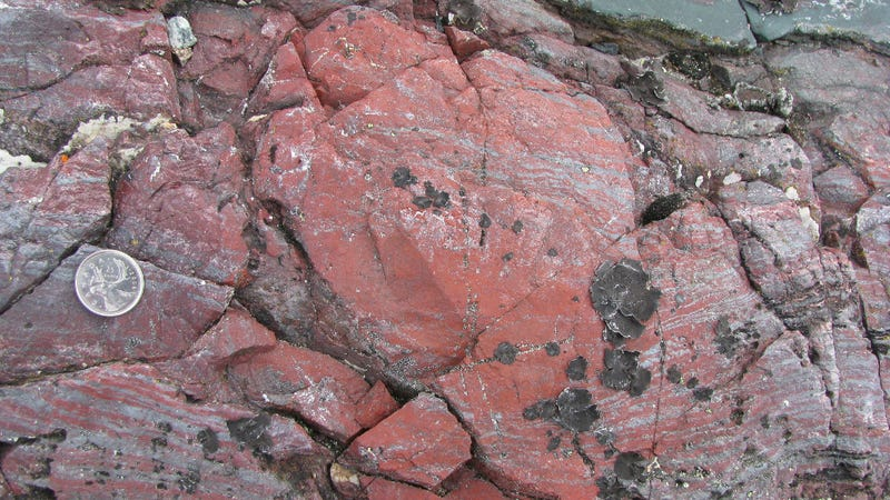 Ancient rocks found in northwestern Quebec contain microbial fossils dating back 3.77 billion years ago. (Image: Dominic Papineau)