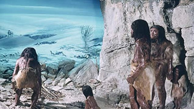 a discussion on cannibalism among neanderthals Cannibalism among late neanderthals in northern europe date: july 6, 2016 source: university of tübingen summary: grisly evidence has been uncovered by researchers that neanderthals butchered .